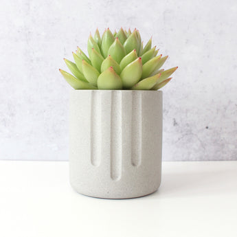 Mini Pot | Jesmonite | Grey