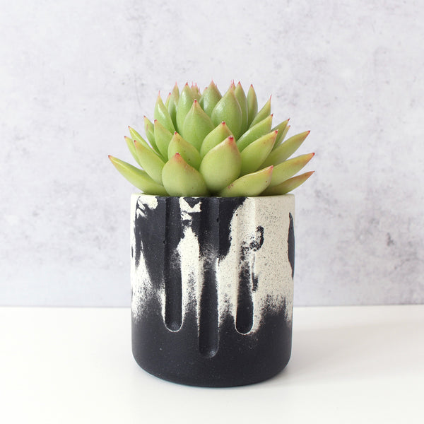 Mini Pot | Jesmonite | Black & White
