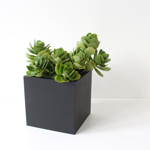 Medium Square Pot | Rubber | Black