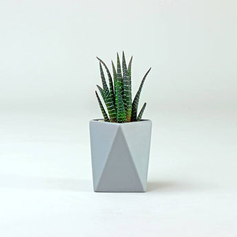 Tall Geometric Pot | Grey