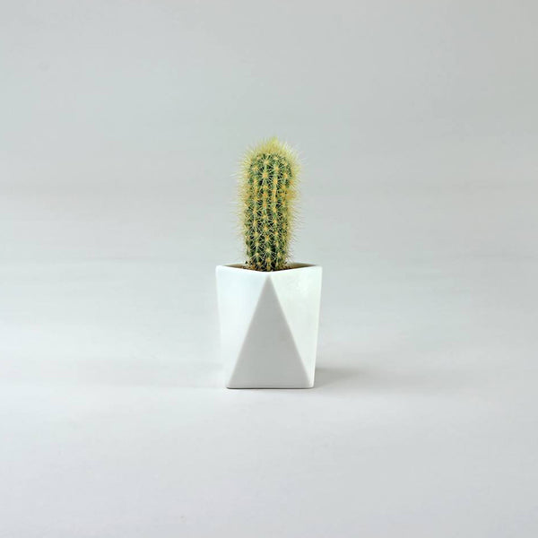 Tall Geometric Pot | White