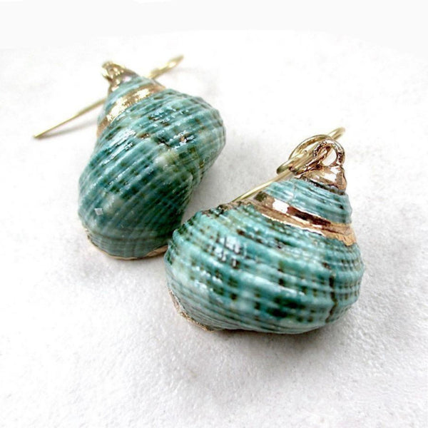 Aqua Green & Gold Turbo Shell Beach Earrings