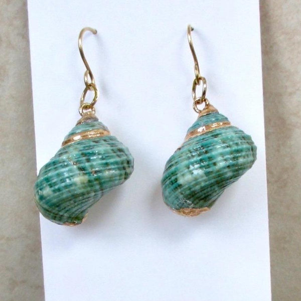 Aqua Green and Gold Beach Earrings with Natural Turbo Shells, Eco Friendly Sustainable summer fashion trends, handmade jewelry by Rough Magic Creations.