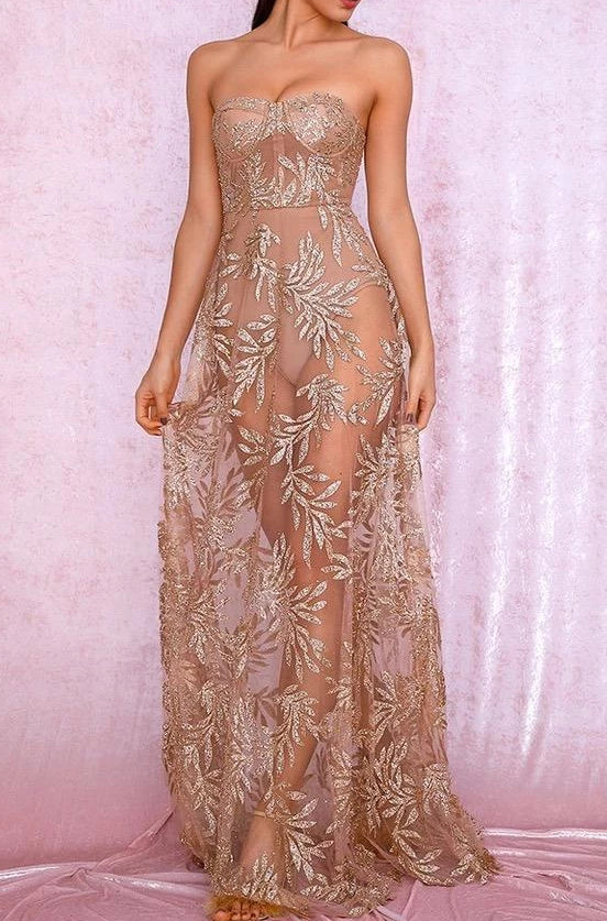 Phoebe Champagne Mesh Embroidered Strapless Maxi Dress