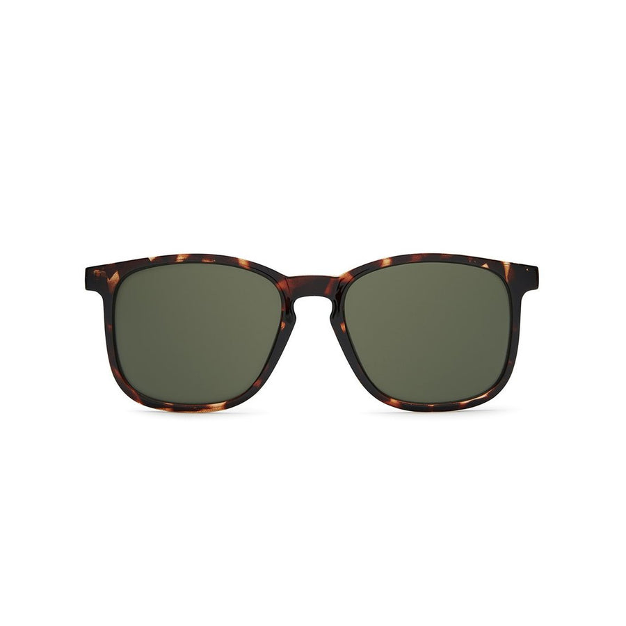 Oxford Sunglasses in Tort by Quay Australia at CURRENT