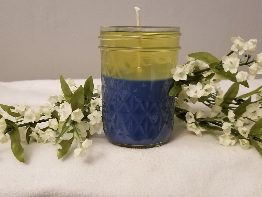 Medium Soy Candle (double layer)