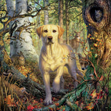 Mark Fredrickson - Yellow Lab - 550 Piece Puzzle