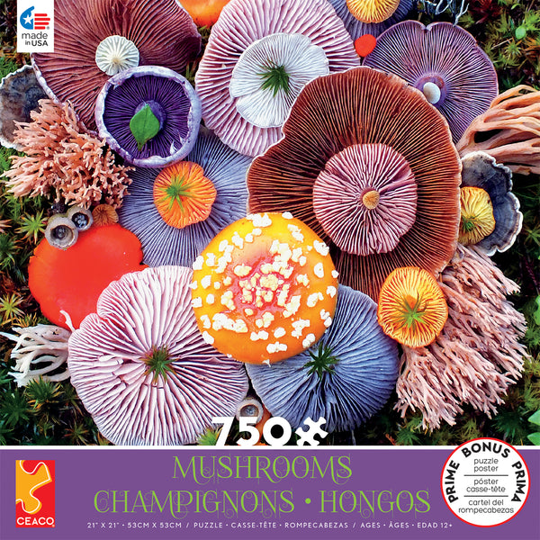 Mushrooms - Agaric - 750 Piece Puzzle