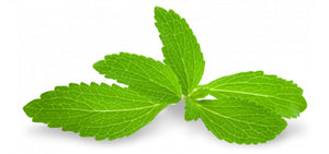 Stevia the Amazing Natural Sweetener