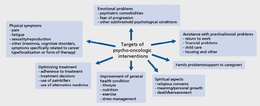Figure 4 Targets of psycho- oncology at HealthMasters Support – Breast Protocol