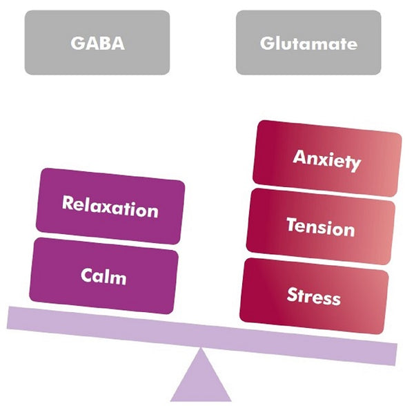 Metagenics NeuroCalm Sleep 10%off RRP GABA and Glutamate Diagram | HealthMasters