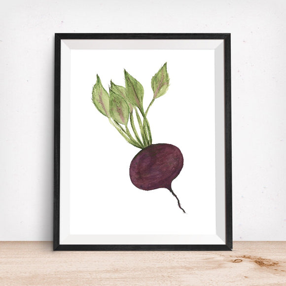 Beet Art Print - Giclee Kitchen Wall Art -Radish