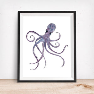 Sealife Series, Octopus- Art Print