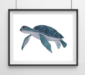 Sealife Series, Sea Turtle- Art Print
