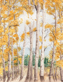 Hope Valley Quaking Aspens, Golden Fall Colors CA California Landmark Art Print
