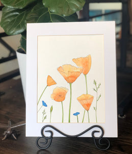 "4/17 Day 30 Final Day $30 California Poppies Poppy Flowers Illustration 8.5 x 11"" Original Watercolor Painting"