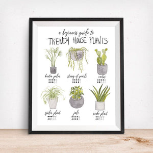 Trendy House Plants-Beginners Guide Art Print