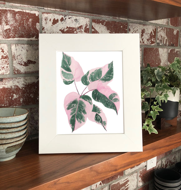 "NEW Pink Princess Philodendron 11 x 14"" Original Watercolor Painting- Pink & Green Mini Houseplant Collection"
