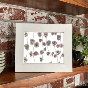 "NEW Ceropegia Woodii- String of Hearts 11 x 14"" Original Watercolor Painting- Pink & Green Mini Houseplant Collection"