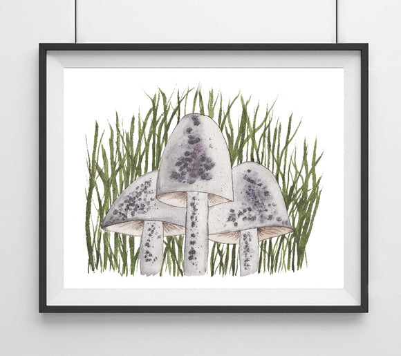 Mushroom Trio, Gray and Purple in tall grass- Art Print