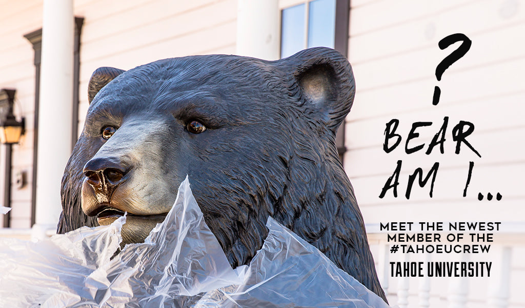 Bear Am I... ? Meet the Newest Member of the #TahoeUCrew at Tahoe University Large bear statue