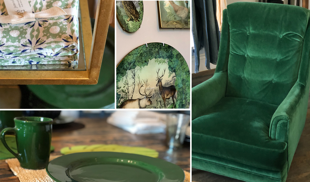 Green home goods and interior design items at Tahoe University boutique and design services
