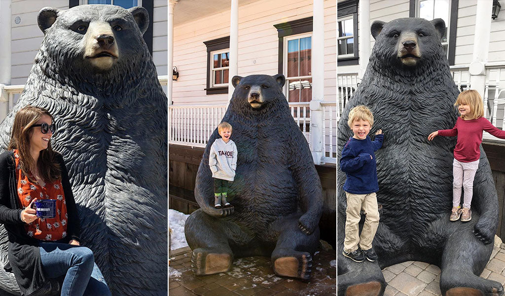 Posing for photos with Bucky the Bear statue at Tahoe University in Truckee, CA