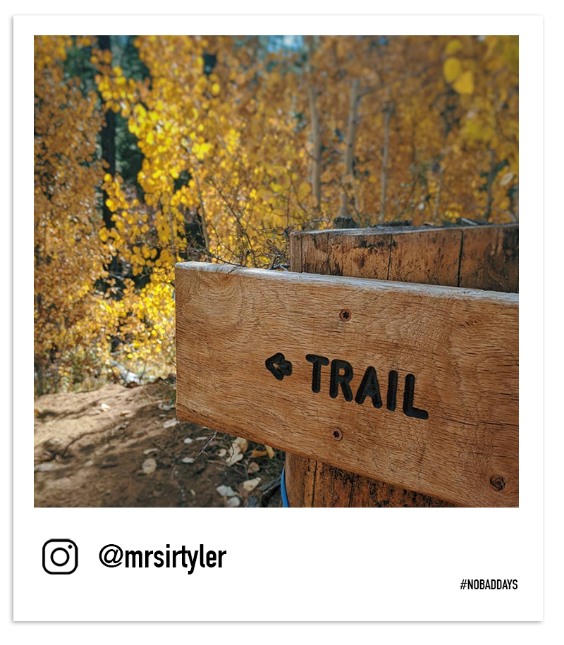 "A wooden sign that reads ""trail"" in the woods among yellow aspen leaves by @mrsirtyler"