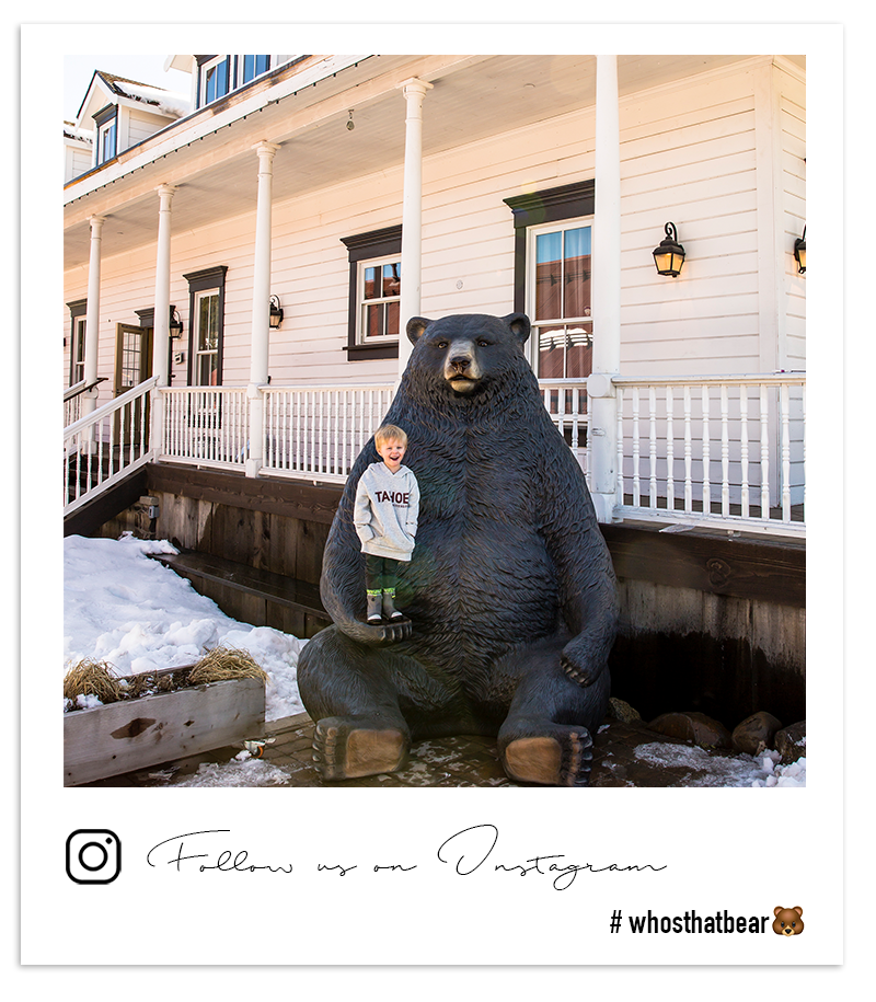 Follow us on Instagram @tahoeuniversity #whosthatbear