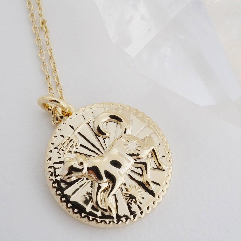 Chinese Zodiac Coin Necklace - Dog Necklaces HONEYCAT Jewelry