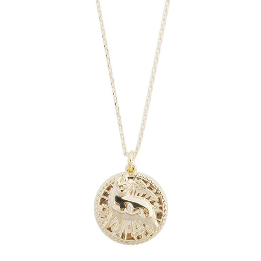 Chinese Zodiac Coin Necklace - Pig