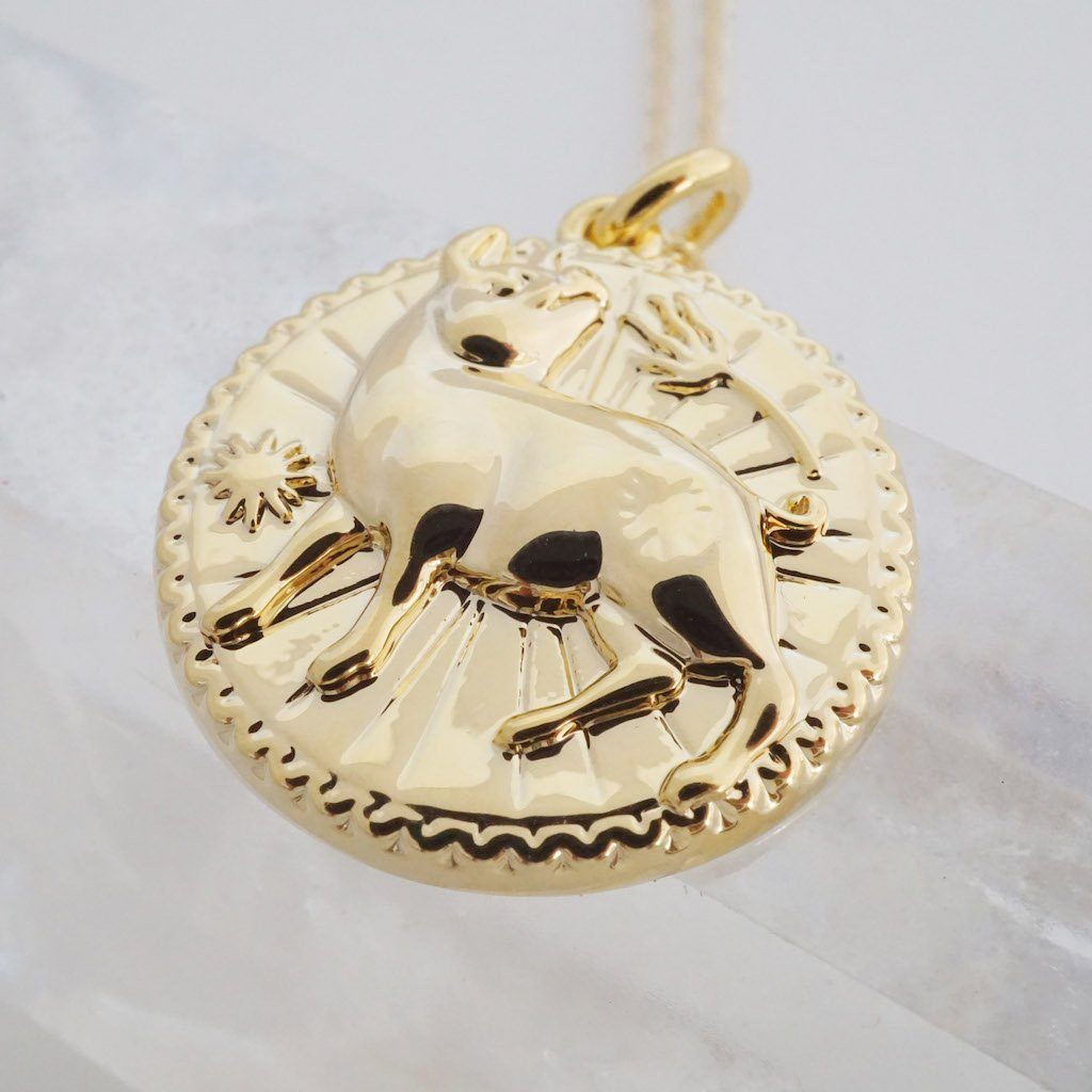 Chinese Zodiac Coin Necklace - Pig Necklaces HONEYCAT Jewelry