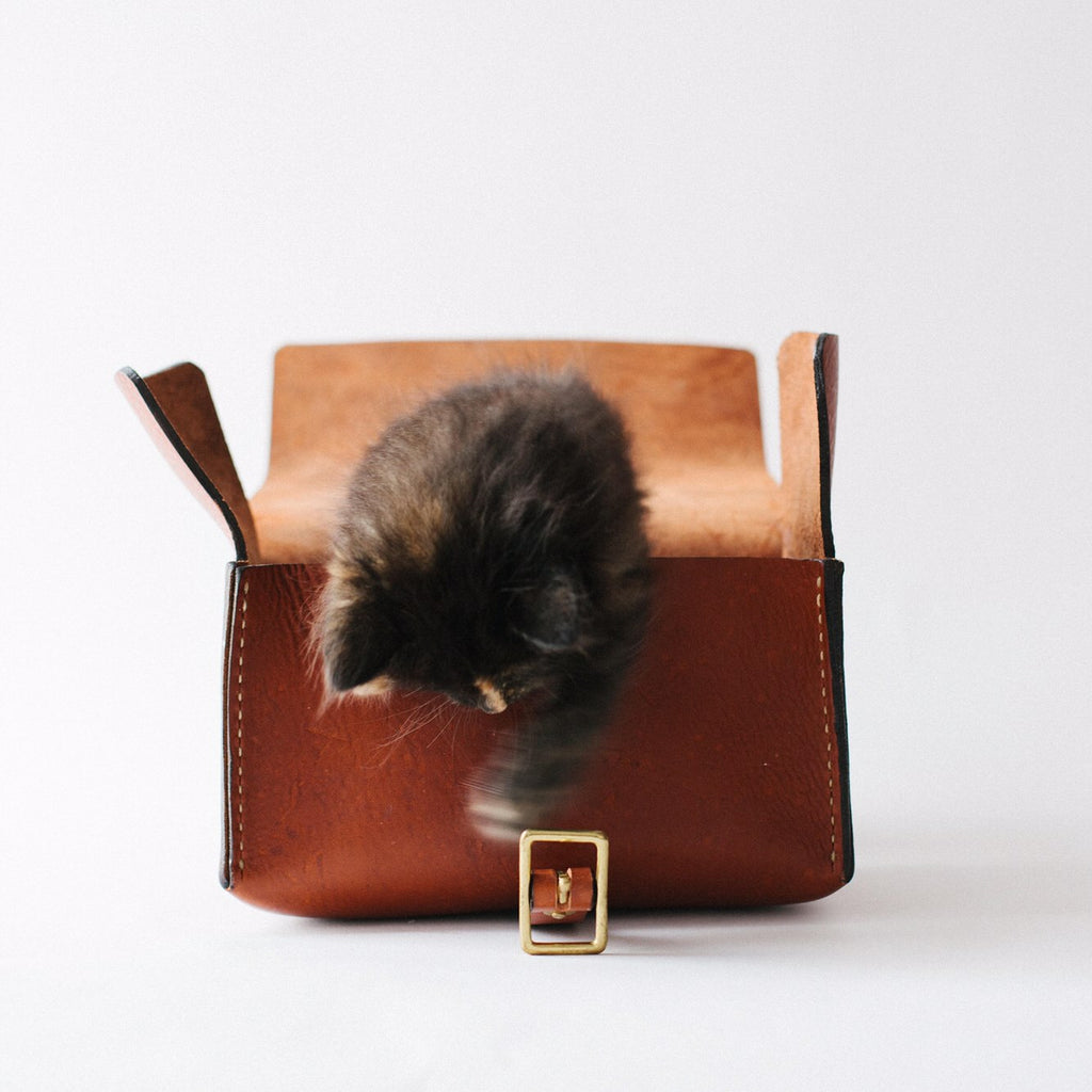 Kitten in leather dopp kit | leather home accessories at KMM & Co.