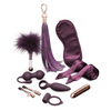 Fifty Shades Freed Pleasure Overload 10 Days of Play Gift Set by Lovehoney - rolik