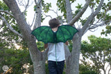 Green Rainforest Dragon Wings and Tail