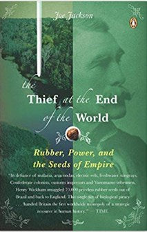 The Thief at the End of the World-Books-Palm Beach Bookery