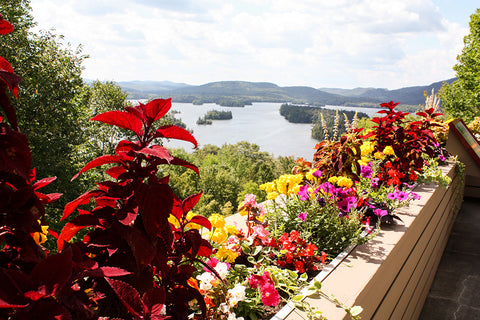 Adirondack Experience, views looking over Blue Mountain Lake | Things to do in the adirondacks | Adirondack Vacation