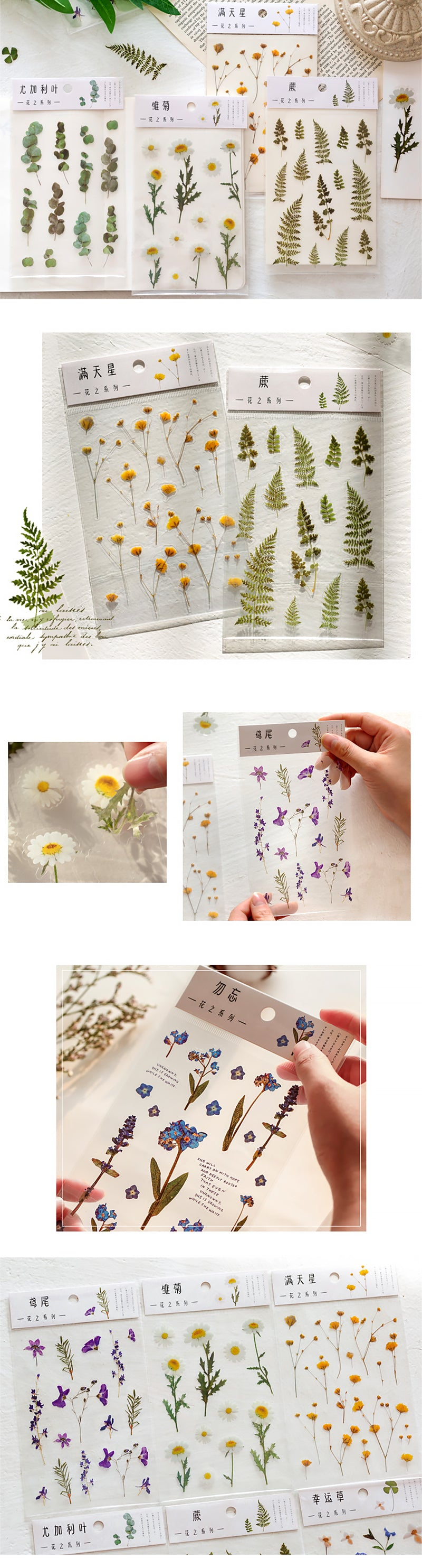 Translucent Botanical Plant Flower Stickers - Detail