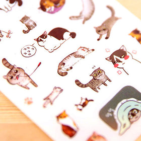 Korean Style Cat Buddy Clear Sticker Set [Gift]