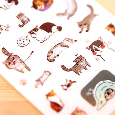 Korean Style Cat Buddy Clear Sticker Set