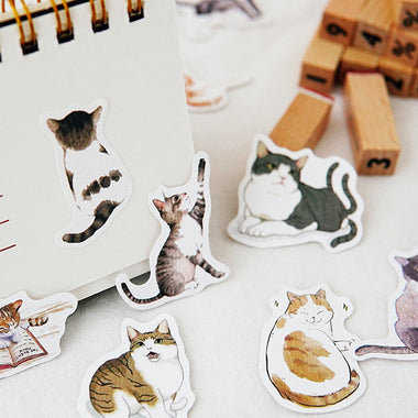 Lazy Cat Drawing Paper Stickers Set