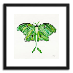 hide - Art print Luna Moth by artist Cat Coquillette in natural wood frame