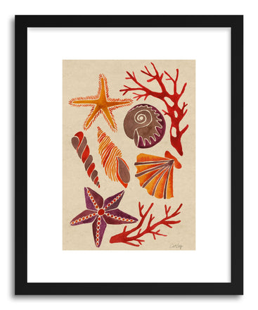 Fine art print Seashells by artist Cat Coquillette