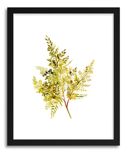 hide - Art print Fern by artist Christine Lindstorm on fine art paper