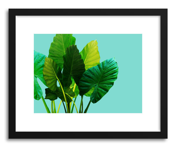 Fine art print Urban Jungle by artist Emanuela Carratoni