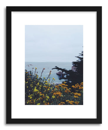 Fine art print California Coastal Flowers by artist Kevin Russ