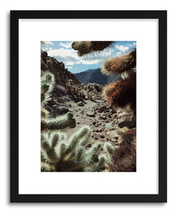 hide - Art print Cholla Frame by artist Kevin Russ on fine art paper