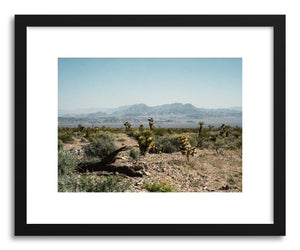 hide - Art print Desert Wildflowers by artist Kevin Russ on fine art paper