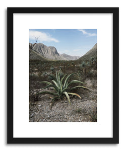 Fine art print Mexican Land by artist Kevin Russ