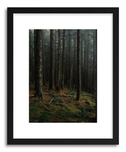 Fine art print Oregon Forest by artist Kevin Russ